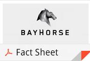 BayhorseSilverFactSheet2014