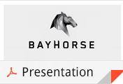 BayhorseSilverPresentation2014