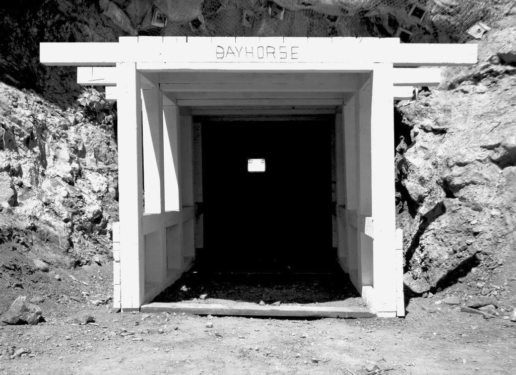 bayhorsesilver portal b&w 2